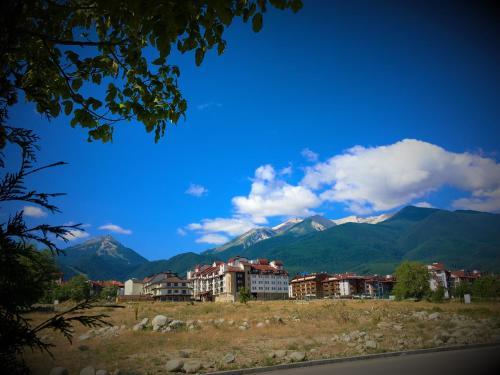 Top Lodge Apartments